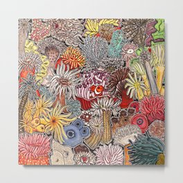 Clown fish and Sea anemones Metal Print
