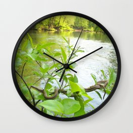 Watercolor Snake, Queen Snake 05, Eno River, North Carolina, Sunbathing on the Eno Wall Clock