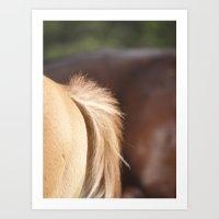 Horse Bum Art Print