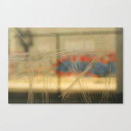 Train Windows. Canvas Print