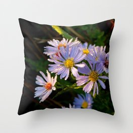 Dewey Purple Aster Throw Pillow