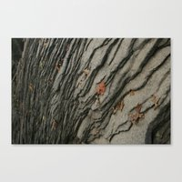 geology Canvas Prints featuring Geology. by PJW Photography