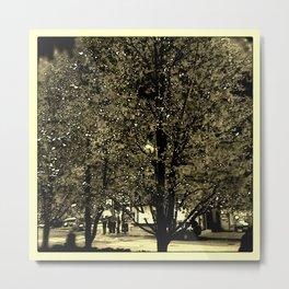 Tara Trees #2 Metal Print