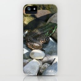 Ribit iPhone Case