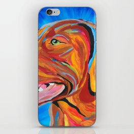 Colorful Lab iPhone Skin