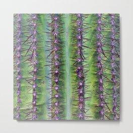 Cactus Closeup Metal Print