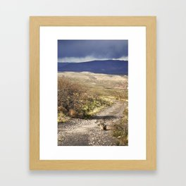 Stormy Trail Framed Art Print