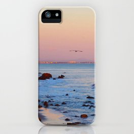 Gliding in Twilight iPhone Case