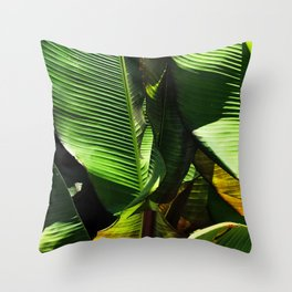 Breathtaking Banana Palm Leaves in Morning Shadows Throw Pillow