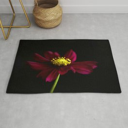 Elegance of a Cosmo Rug