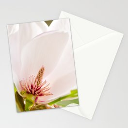 Magnolia sepal flowering macro Stationery Cards
