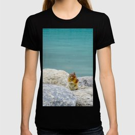 Digital Painting of a Cute Chipmunk sitting on a Rock in front of Lake Louise, Alberta T-shirt