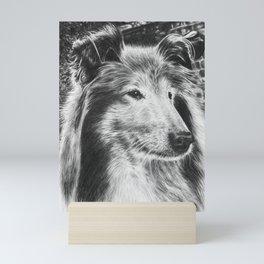 Rough Collie Dog Mini Art Print