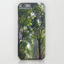 Bamboo Forrest iPhone Case