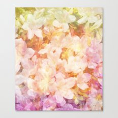 Azalea Flowers Canvas Print