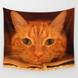 Cat in a Bag Wall Tapestry