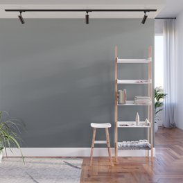 Benjamin Moore Hale Navy Blue Gray HC-154 and Color of the Year Metropolitan Gradient Ombre Wall Mural
