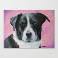 border collie Canvas Prints featuring Border Collie by paintintheneck