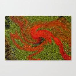 Dysy Canvas Print