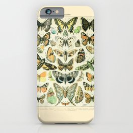 Vintage Butterfly Diagram // Papillions by Adolphe Millot 19th Century Science Textbook Artwork iPhone Case