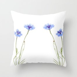 Two blue cornflower flowers isolated on white Throw Pillow