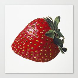 A Strawberry, Out of the Universe Canvas Print