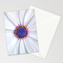 daisy daisy Stationery Cards