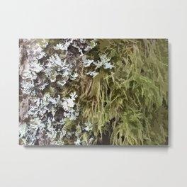 Abstract Moss design 01 Metal Print