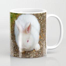 Fluffy white bunny Coffee Mug