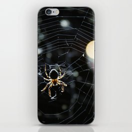 spider iPhone Skin