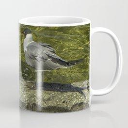 Sitting on the Seawall Coffee Mug