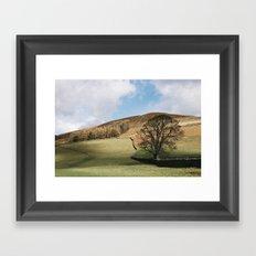 Sunlit tree and hillside. Edale, Derbyshire, UK. Framed Art Print