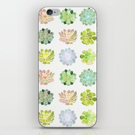 Spring Succulents iPhone Skin