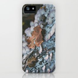 mystic woods iPhone Case