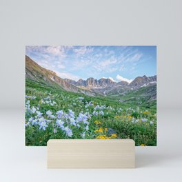 COLORADO HIGH COUNTRY MOUNTAIN SUMMER WILDFLOWERS LANDSCAPE PHOTOGRAPHY Mini Art Print