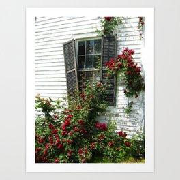 Abandoned Roses Art Print