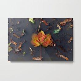 Murky Maple Leaf Metal Print