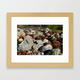 Rusty Moss Framed Art Print