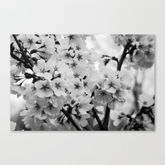 Without Color Canvas Print