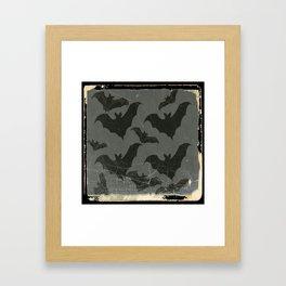 ANTIQUE  SHABBY CHIC  BATS ART DESIGN Framed Art Print