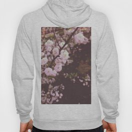 Soft Pink Blossoms Hoody