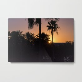 Backlight with palm trees Metal Print