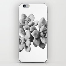 Succulent Blooms - Grayscale iPhone & iPod Skin