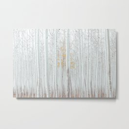 White tree forest Metal Print
