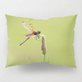 Blood Pennant Dragon Fly Pillow Sham