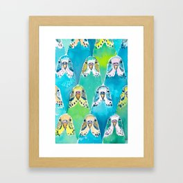 Budgies Framed Art Print