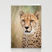 cheetah Stationery Cards featuring Cheetah by Simon's Photography