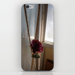 At the stables iPhone Skin