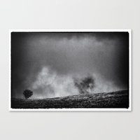 one tree hill Canvas Prints featuring One tree hill by Mark Nelson