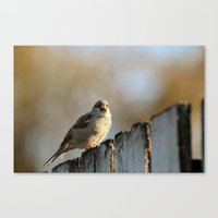lonely Canvas Prints featuring Independent! by IowaShots